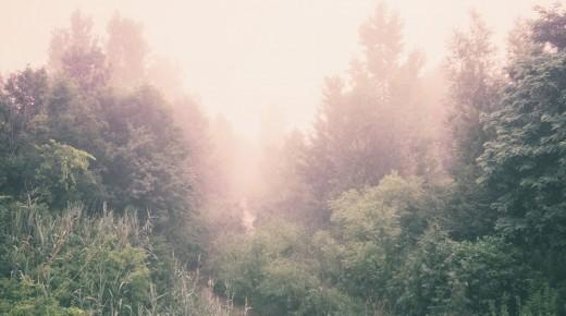 Blockchain – Sortir du brouillard