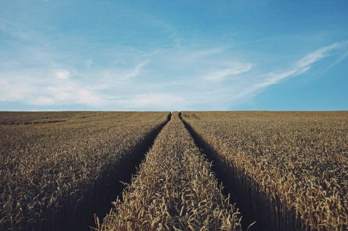 Uberisation agroalimentaire